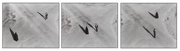 Photography, Shirin Neshat, Untitled, 2000, 24640