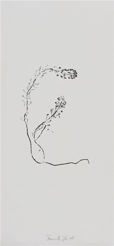 , Farnaz Rabieijah, Untitled, 2018, 20511