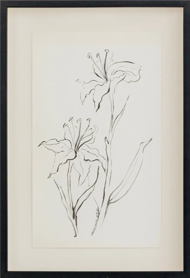 Drawing, Monir Shahroudy Farmanfarmaian, Lily, 1986, 29547