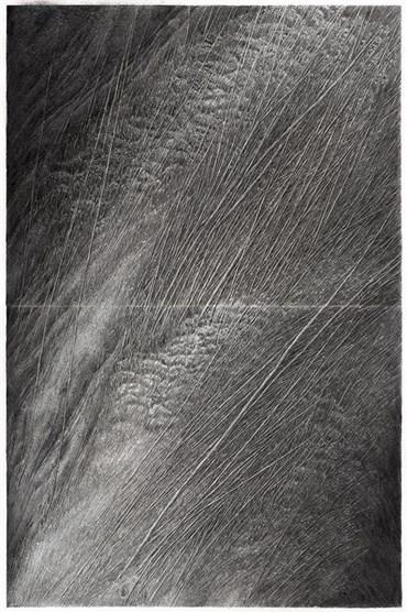 , Nafiseh Sedighi, Untitled, 2019, 36335