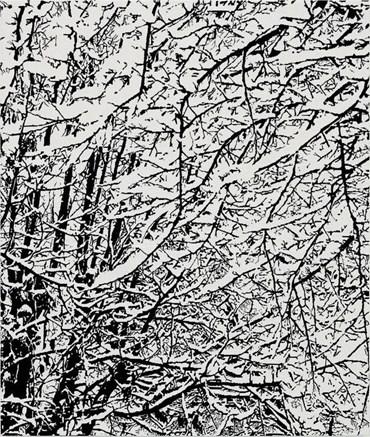 , Farhad Moshiri, SNOW FOREST 006A, 2017, 47930