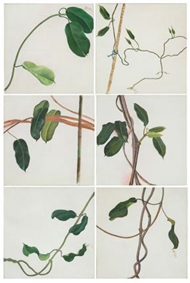 , Leyly Matine Daftary, Untitled, 1993, 6549