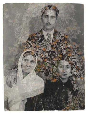 Nazli Abbaspoor, Untitled, 0, 0