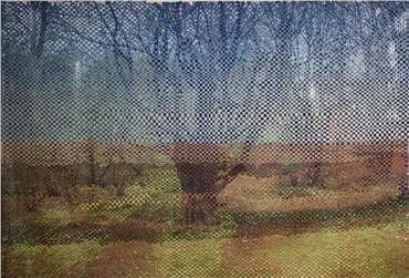 , Arya Tabandehpoor, Untitled, 2017, 8259