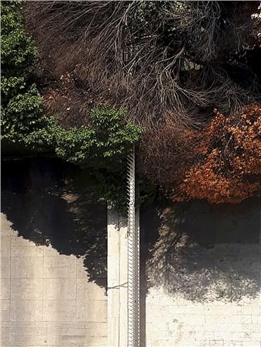 , Hoofar Haghighi, Untitled, 2020, 39890