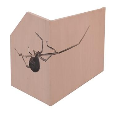 , Hesam Rahmanian, Spider, 2018, 17664