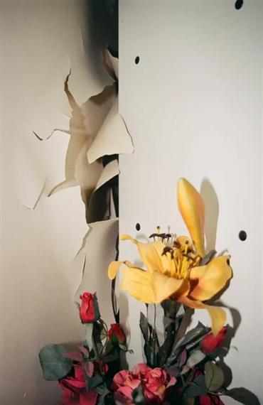 , Alborz Kazemi, Untitled, 2016, 37957