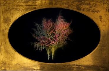 , Matin Abedi, Untitled, 2019, 49671