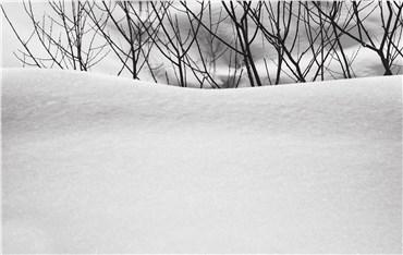 , Abbas Kiarostami, Snow No.33, 2002, 29871