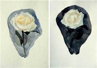 , Hossein Shirahmadi, White Rose in two variation, 2020, 38238