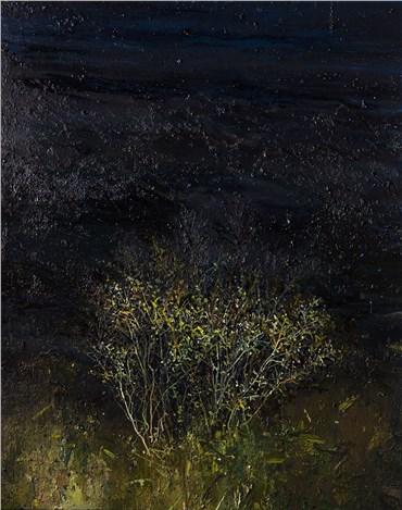 , Saeed Khaleghi, Untitled, 2020, 38026