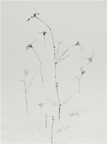 , Farnaz Rabieijah, Untitled, 2018, 20507