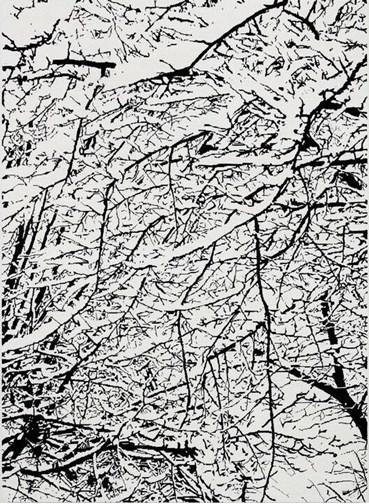 , Farhad Moshiri, SNOW FOREST 008A, 2017, 47929
