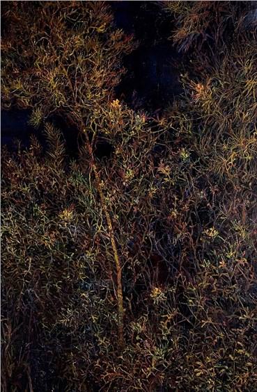 , Saeed Khaleghi, Untitled, 2020, 38028
