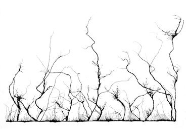 , Mahmoud Hamadani, Untitled, 2000, 13678