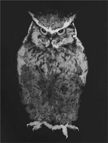 , Marjan Seyedin, Hibou en pied (Owl in Feet), 2015, 15650