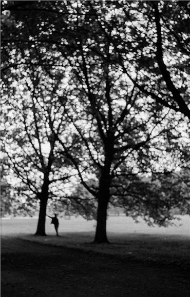 , Kamran Shirdel, 25, 1960, 15698