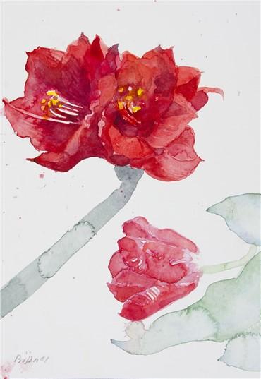 , Bijan Saffari, Untitled, 2001, 16776