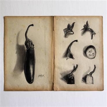 , Morteza Pourhosseini, Eggplant, 2020, 25215