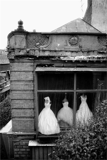 , Tahmineh Monzavi, The Brides of Mokhbar al-Dowleh, 2006, 22319