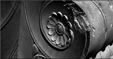 , Bijan Seyfouri, Lotus, 2014, 12825