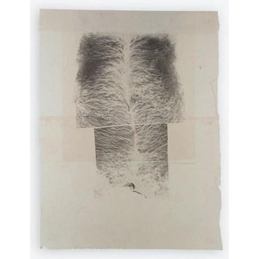 , Asareh Akasheh, Untitled, 2019, 41970
