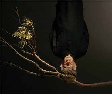 Hossein Valamanesh, Nesting, 2005, 0