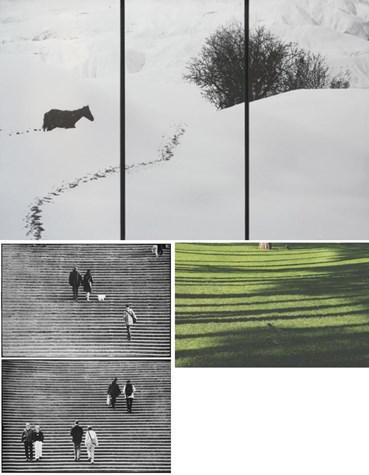Abbas Kiarostami: About, Artworks and shows