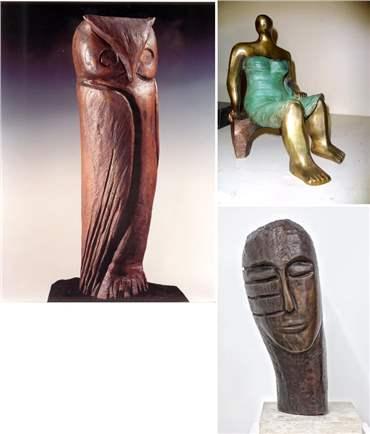 سیمین اکرامی: درباره، آثار هنری و نمایشگاه ها