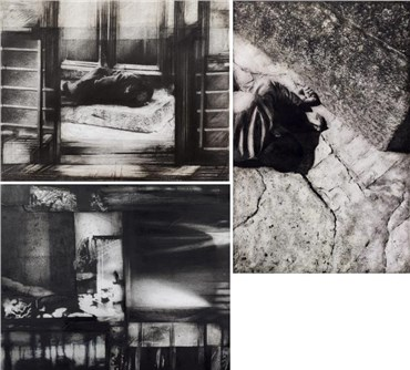 Raha Raissnia: About, Artworks and shows