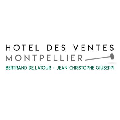 Hôtel des Ventes Montpellier Languedoc logo
