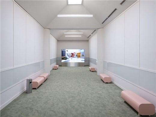 Busan Biennale 2020