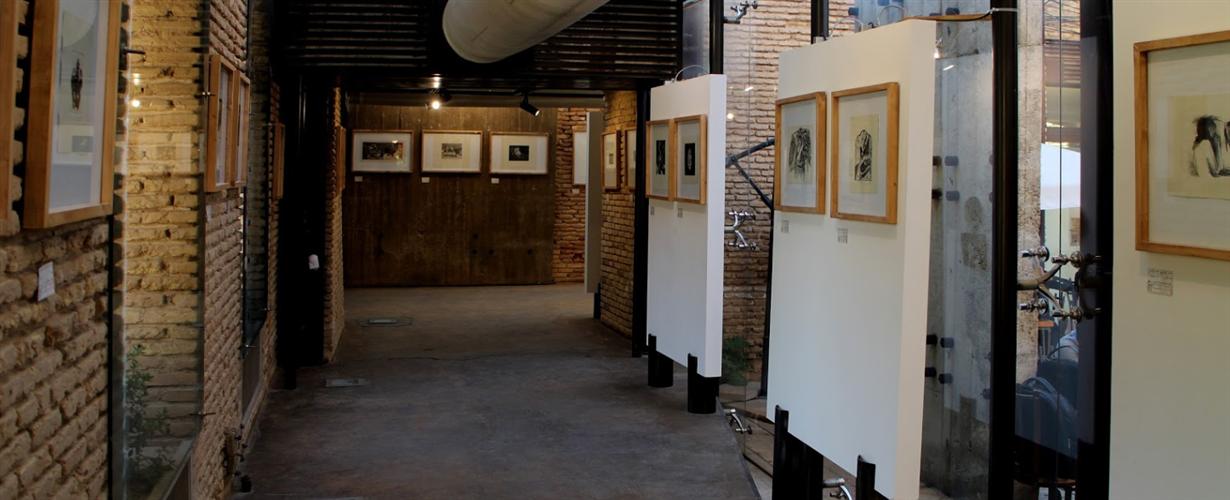Taropood Art Gallery