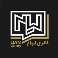 Liam Gallery