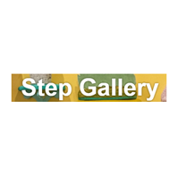 Step Gallery