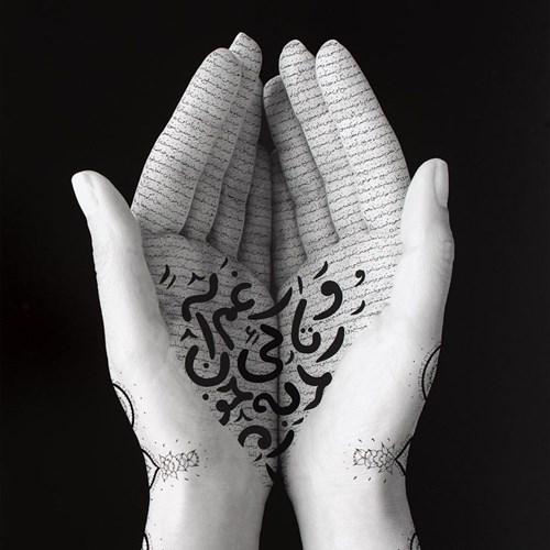 Shirin Neshat's Artworks